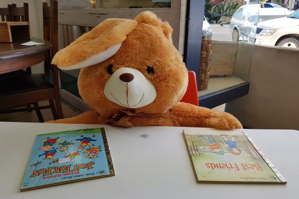Macleay Options Smith St store teddy bears picnic